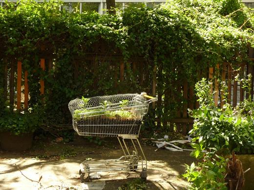 Mobiler Garten im Einkaufswagen (Max Holicki, 2010 - Foto: VK)